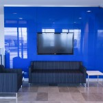 Couches and blue feature wall