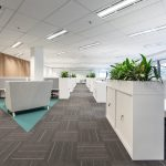 Work desks with plants