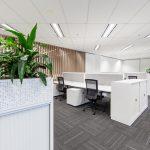 Working desks with plants