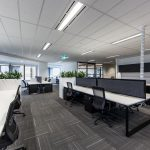 office cubicles with plants
