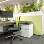 Green desk area